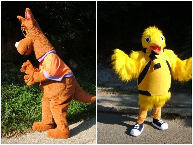 animal mascots